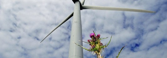 pentland-road-windfarm